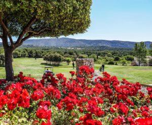 Les golfs en Provence Alpes cote d azur