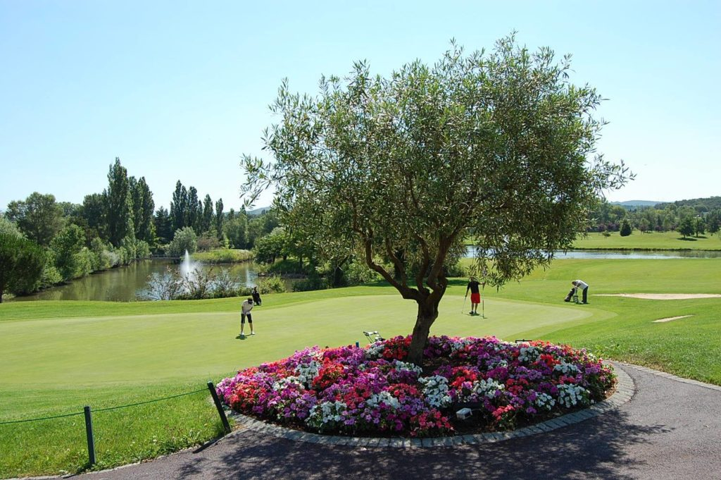 Golf de la Valdaine Green