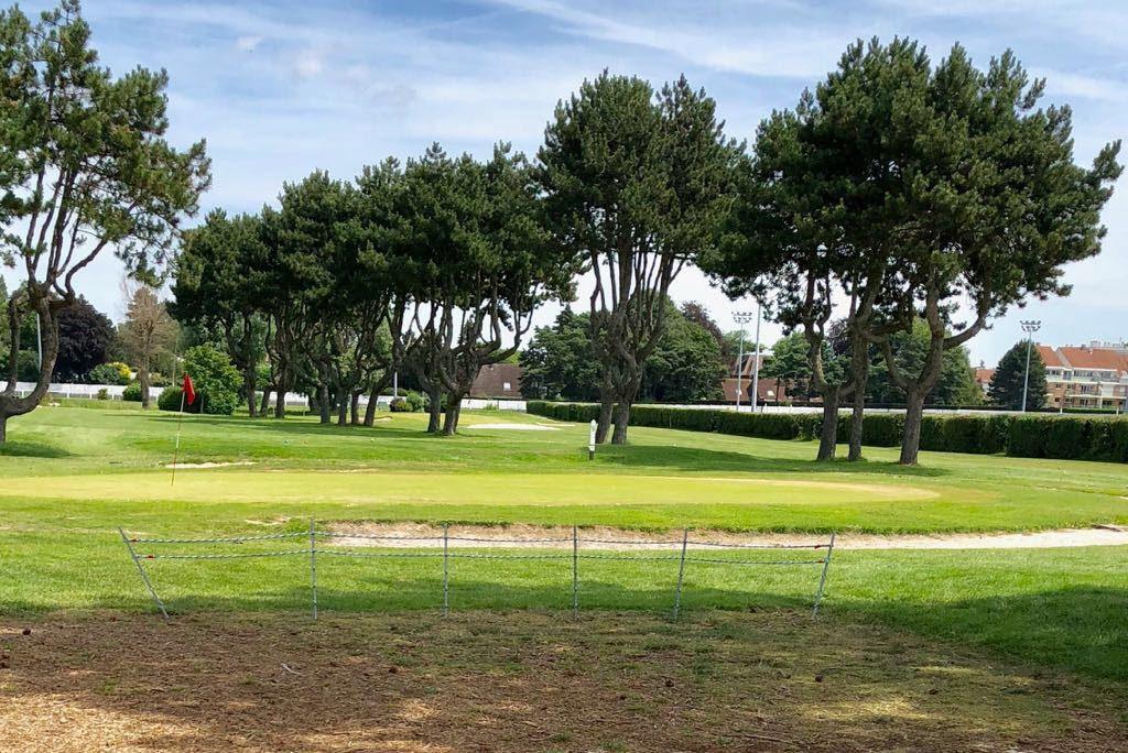 Parcours green fairway