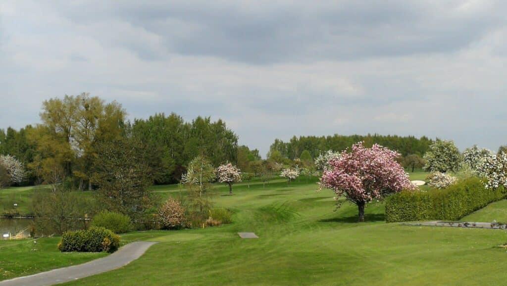 arbre parcours printemps golf normal