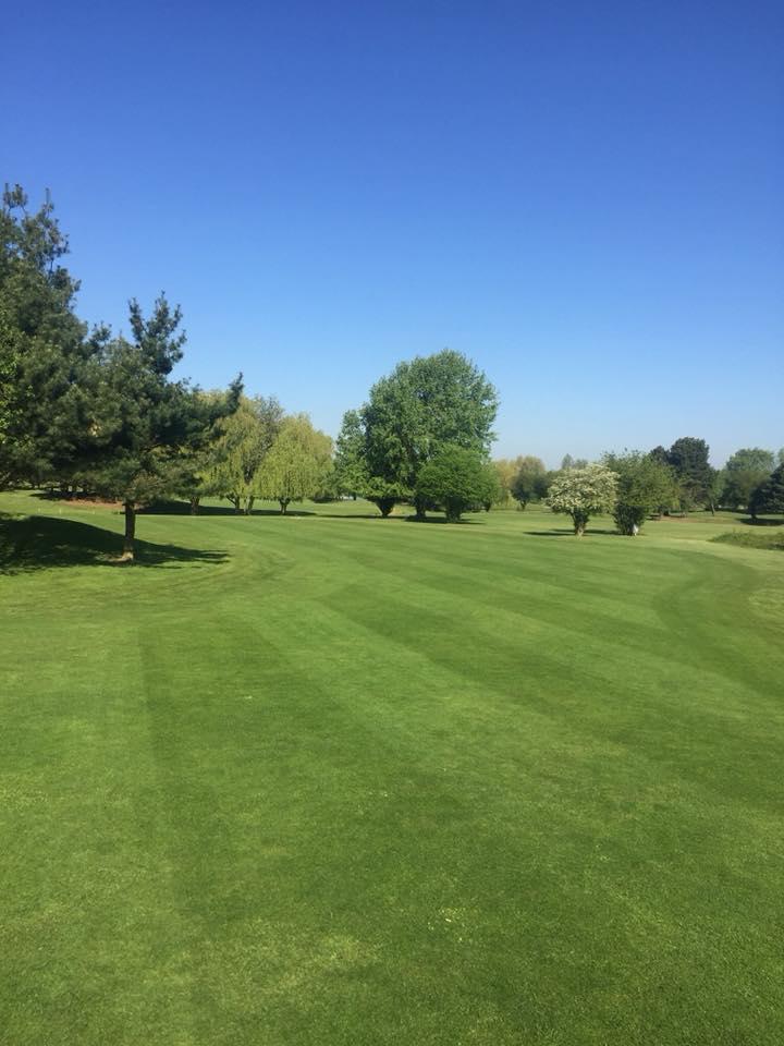 fairway green arbres slope golf vert parc