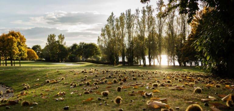 Golf Bluegreen Lac au Duc Plöermel