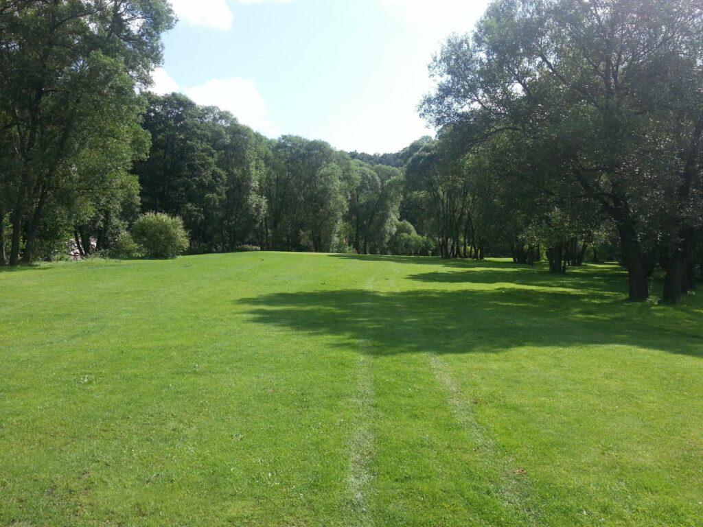 Golf de La Ligne Bleue des Vosges Arbres fairway bunker Par 3