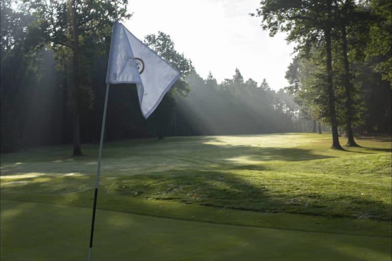 Golf du Champ de Bataille Green drapeau bois arbres