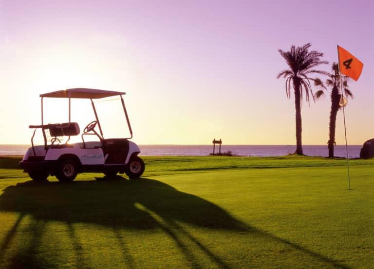 Amarilla Golf Green du 4 voiturette