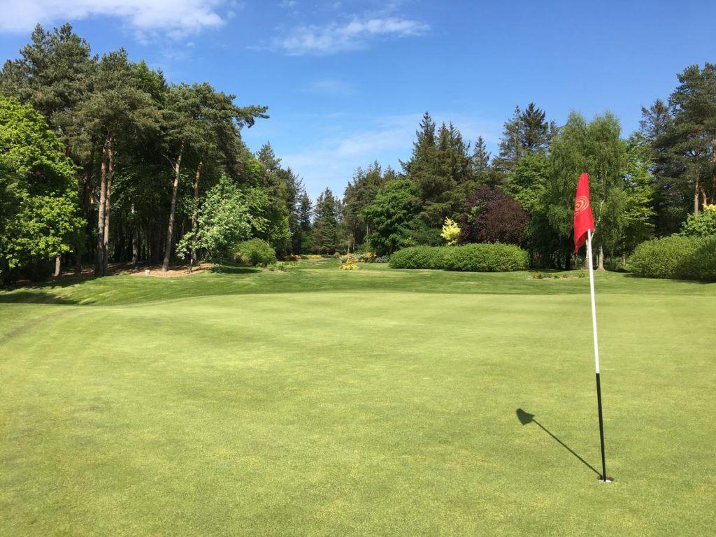 Druids Glen Hotel & Golf Resort green