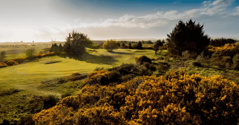The Irvine Golf Club Lecoingolf
