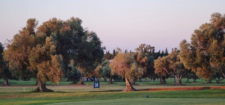 Club de Golf Campano Pratice Driving Range dans les Oliviers